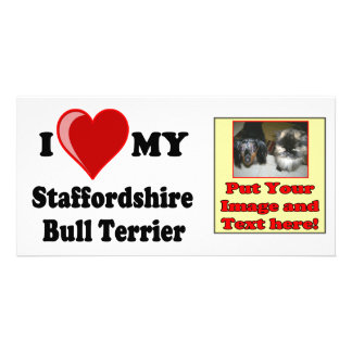 I Love (Heart) My Staffordshire Bull Dog Picture Card