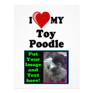 I Love (Heart) My Toy Poodle Dog 21.5 Cm X 28 Cm Flyer