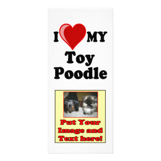 I Love (Heart) My Toy Poodle Dog Full Color Rack Card