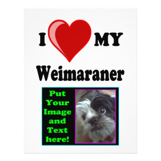 I Love Heart My Weimaraner Dog Flyer Design