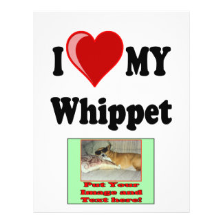 I Love (Heart) My Whippet Dog 21.5 Cm X 28 Cm Flyer