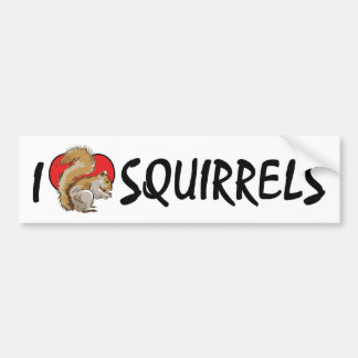 I Love Heart Squirrels - Squirrel Lover Bumper Sticker