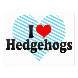 I Love Hedgehogs Post Card