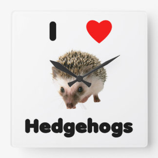 I love hedgehogs square wall clock