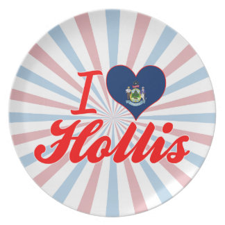I Love Hollis, Maine Plate