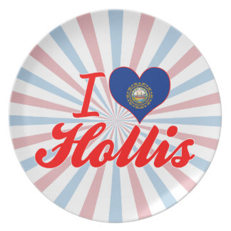 I Love Hollis, New Hampshire Plates