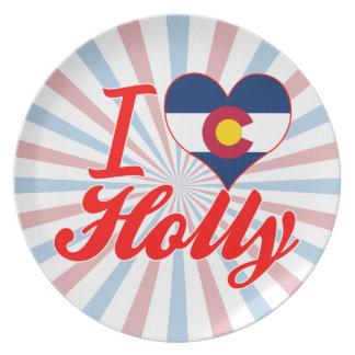 I Love Holly, Colorado Party Plates
