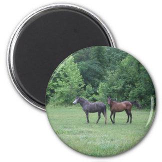 I love horses!  again 6 cm round magnet