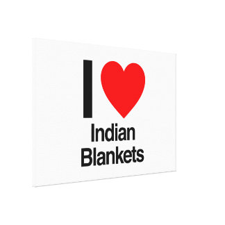 i love indian blankets gallery wrap canvas