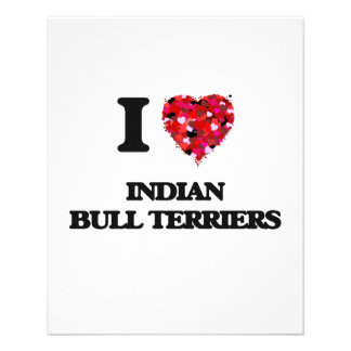 I love Indian Bull Terriers 11.5 Cm X 14 Cm Flyer