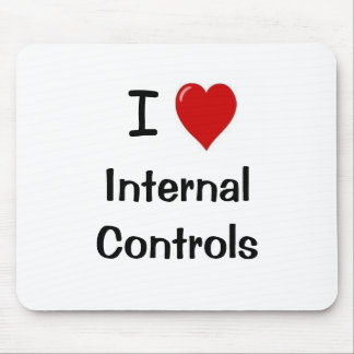 I Love Internal Controls - Funny Compliance Quote Mouse Mat