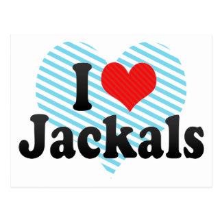 I Love Jackals Post Card