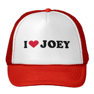 I LOVE JOEY MESH HATS