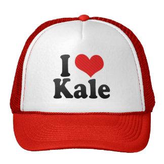 I Love Kale Cap