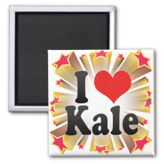 I Love Kale Fridge Magnet