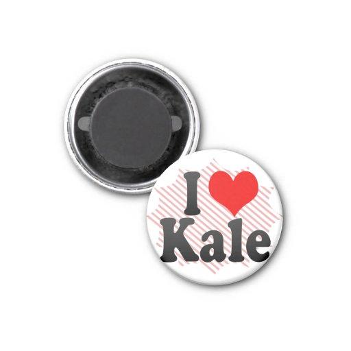 I love Kale Refrigerator Magnet