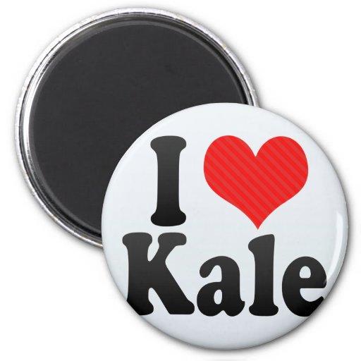 I Love Kale Fridge Magnets