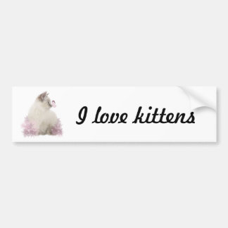I love kittens bumpersticker bumper sticker