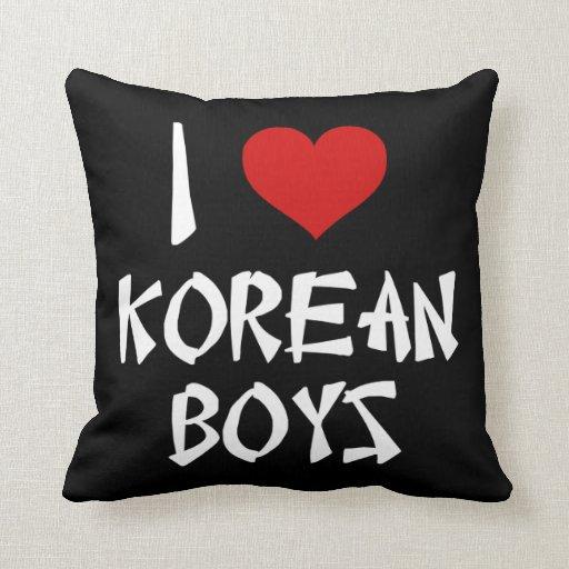 I Love Korean Boys Cushions