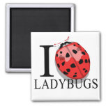 I Love Ladybugs Magnets