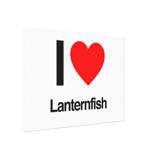 i love lanternfish gallery wrapped canvas