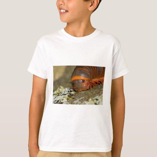 I Love Lichen T-Shirt