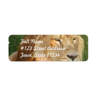 I Love Lions Mailing Labels