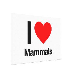 i love mammals stretched canvas prints
