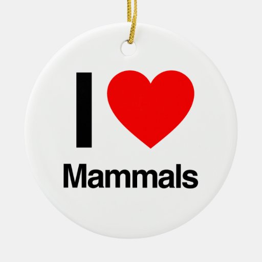 i love mammals christmas tree ornament