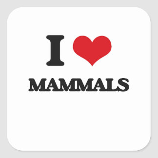 I Love Mammals Square Stickers