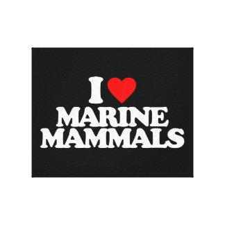 I LOVE MARINE MAMMALS CANVAS PRINT