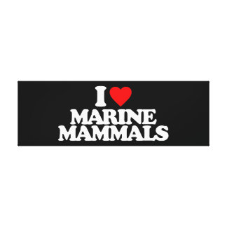 I LOVE MARINE MAMMALS GALLERY WRAPPED CANVAS