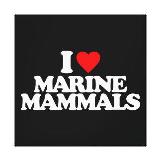 I LOVE MARINE MAMMALS STRETCHED CANVAS PRINTS