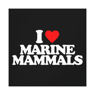 I LOVE MARINE MAMMALS STRETCHED CANVAS PRINTS