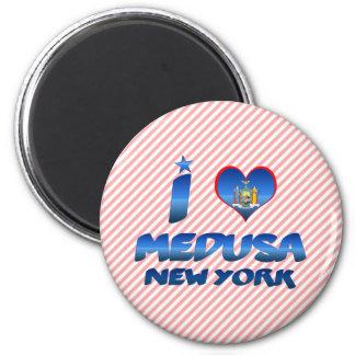 I love Medusa New York Fridge Magnet