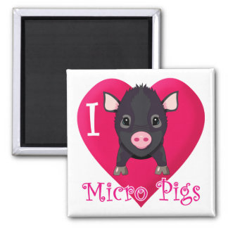 I Love Micro Pigs Square Magnet