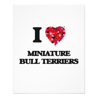 I love Miniature Bull Terriers 11.5 Cm X 14 Cm Flyer