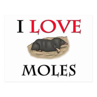 I Love Moles Postcard