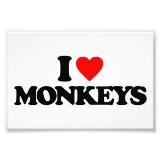 I LOVE MONKEYS PHOTO