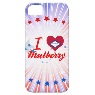 I Love Mulberry, Arkansas iPhone 5 Cases