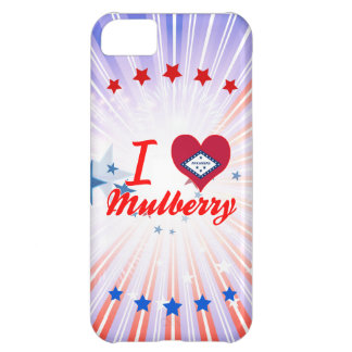I Love Mulberry, Arkansas Case For iPhone 5C