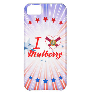 I Love Mulberry, Florida Case For iPhone 5C