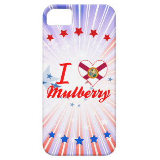 I Love Mulberry, Florida iPhone 5 Cases
