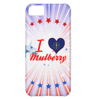 I Love Mulberry, Indiana iPhone 5C Cover