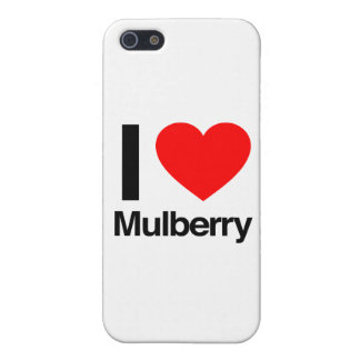 i love mulberry iPhone 5/5S case