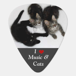 I Love Music and Cats Guitar Pick