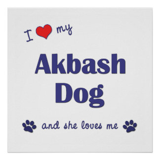 I Love My Akbash Dog Female Dog Print