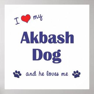 I Love My Akbash Dog Male Dog Print