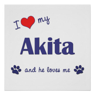 I Love My Akita (Male Dog) Poster