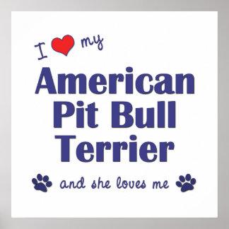 I Love My American Pit Bull Terrier (Female Dog) Poster